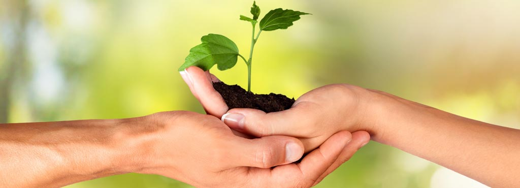 COHITECH_social_environmental_commitment_promote_sustainable_lifestyle_model_ environment_territory_natural_ecological_ecofriendly_women_hygiene